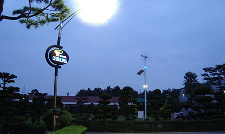 BBE LED Street Light LU4 in Korea