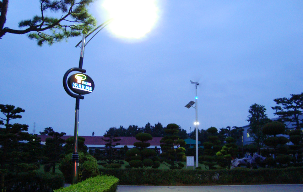 LED Street Light in Korea